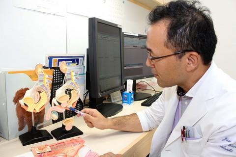泌尿器科模型